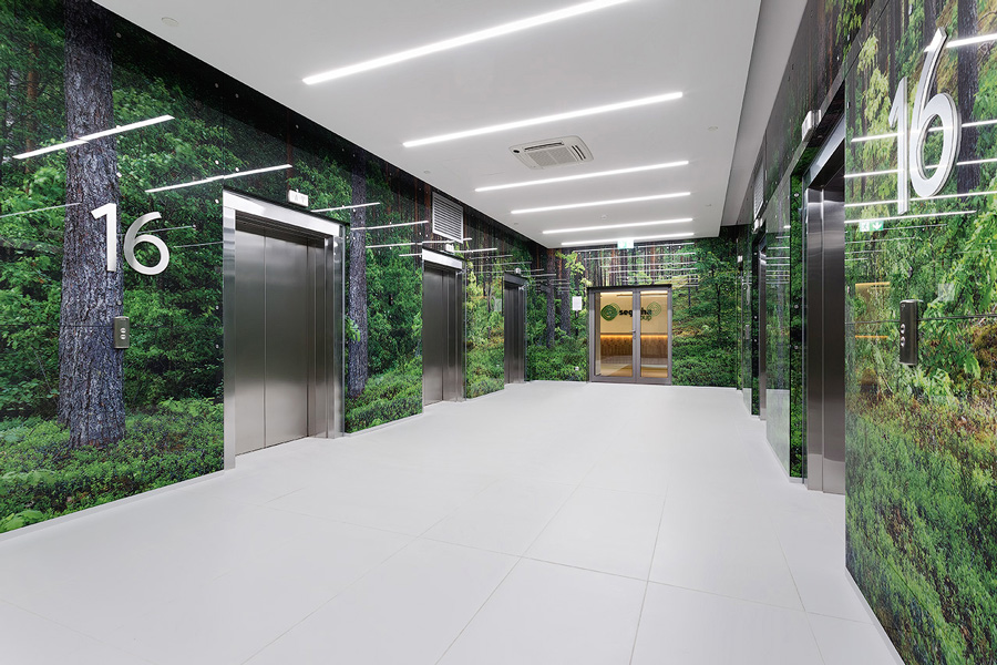 Photo Trees and forest sights: NAYADA for the Segezha Group office interior