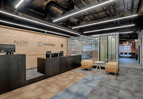 Office as a highly productive work environment: NAYАDA for Align Technology
