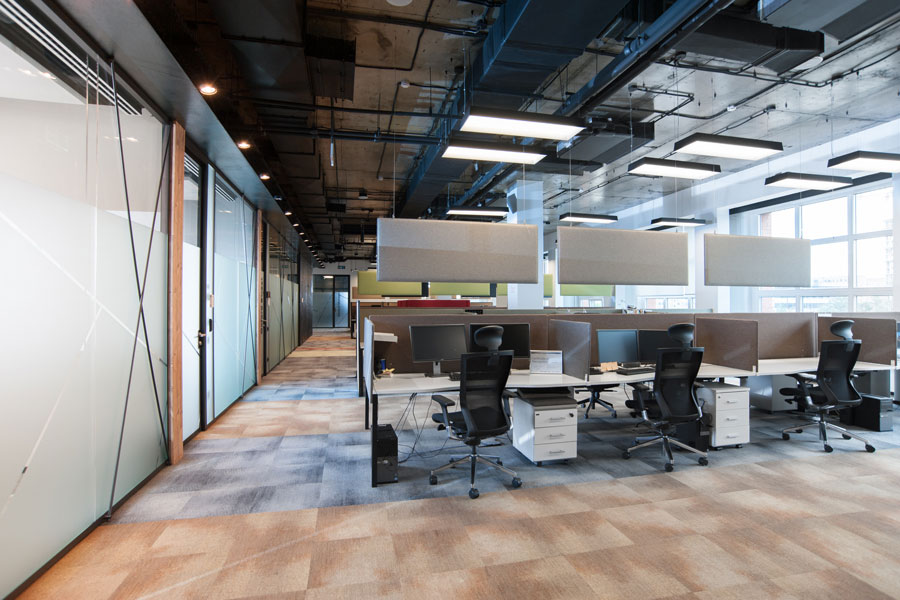 Photo Office as a highly productive work environment: NAYАDA for Align Technology
